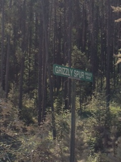 Grizzlysign