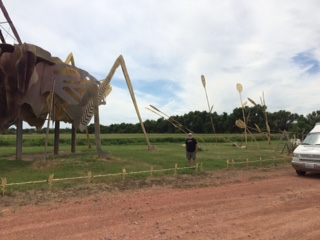 GrasshopperSculpture