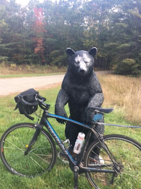 Bear&bike