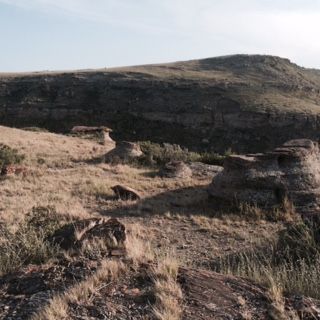 CutBanklandscape